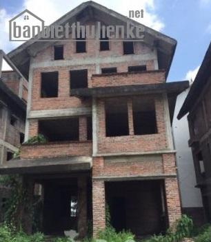 Bán biệt thự Việt Hưng BT8 230m2 ĐN giá 14tỷ
